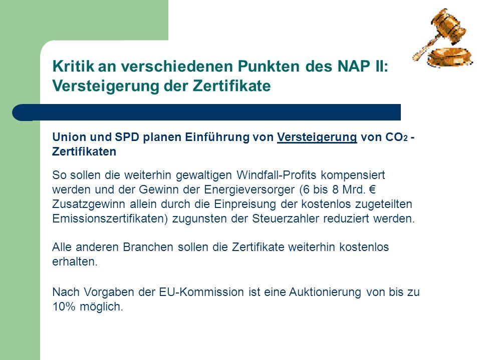 Kritik an verschiedenen Punkten des NAP II: Versteigerung der Zertifikate