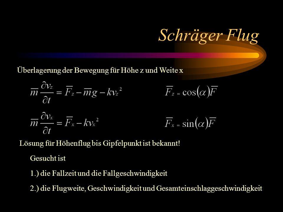 Schräger Flug Überlagerung der Bewegung für Höhe z und Weite x