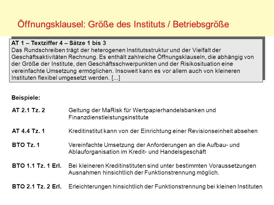 Öffnungsklausel: Größe des Instituts / Betriebsgröße