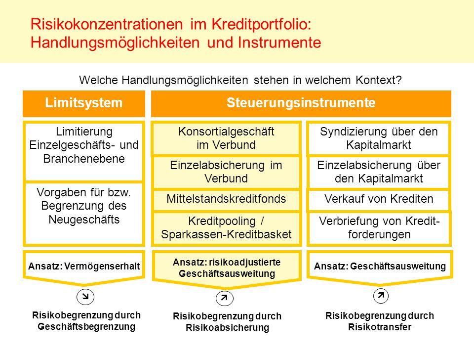 Risikokonzentrationen im Kreditportfolio: Handlungsmöglichkeiten und Instrumente