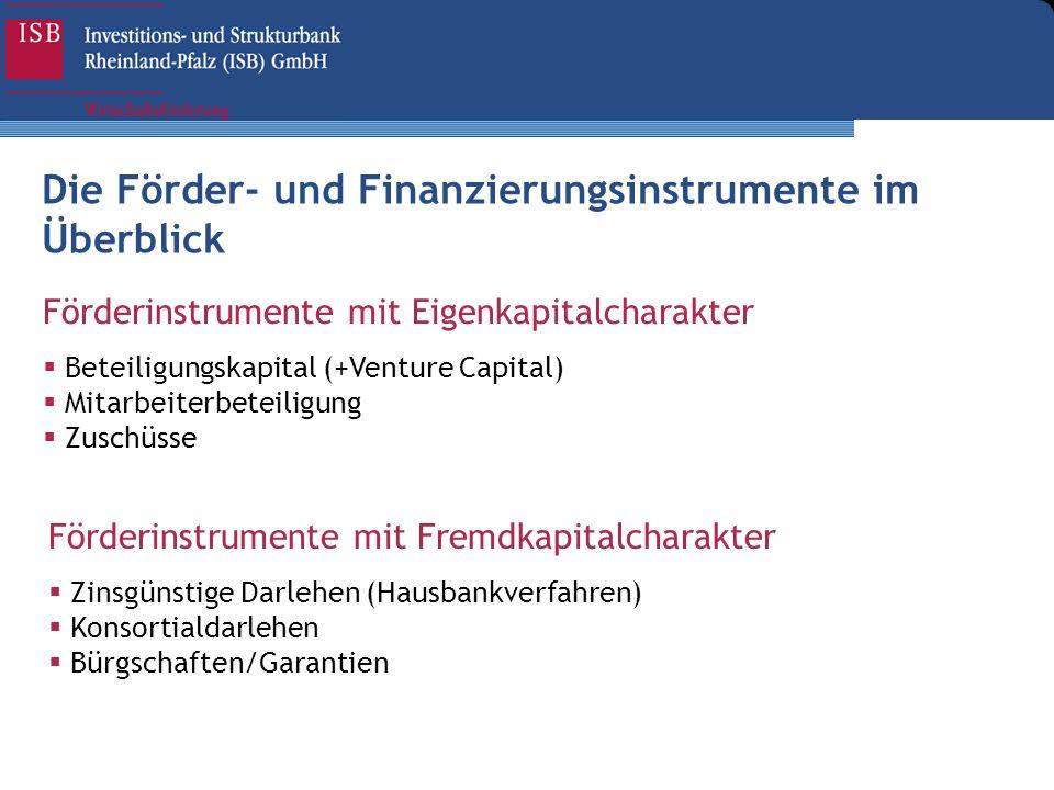 Die Förder- und Finanzierungsinstrumente im Überblick
