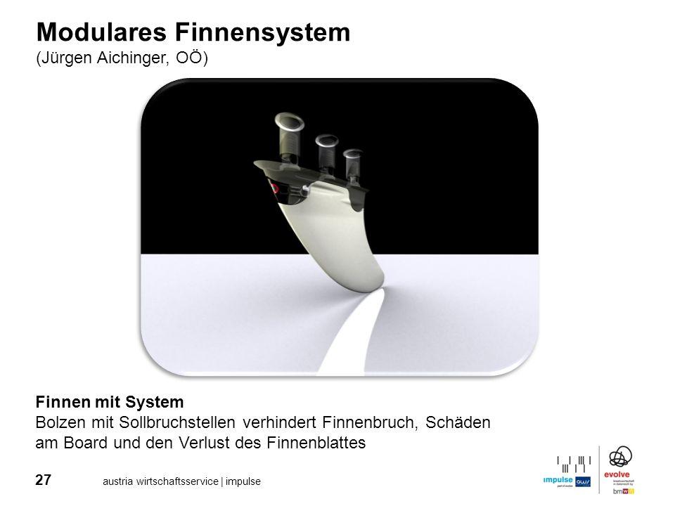 Modulares Finnensystem
