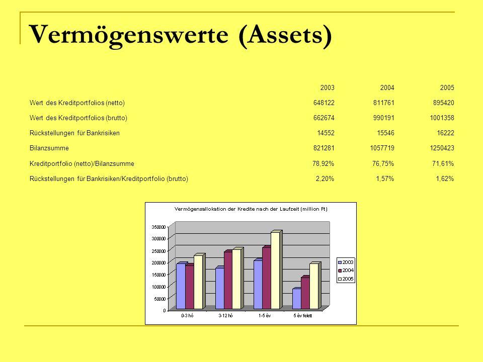Vermögenswerte (Assets)