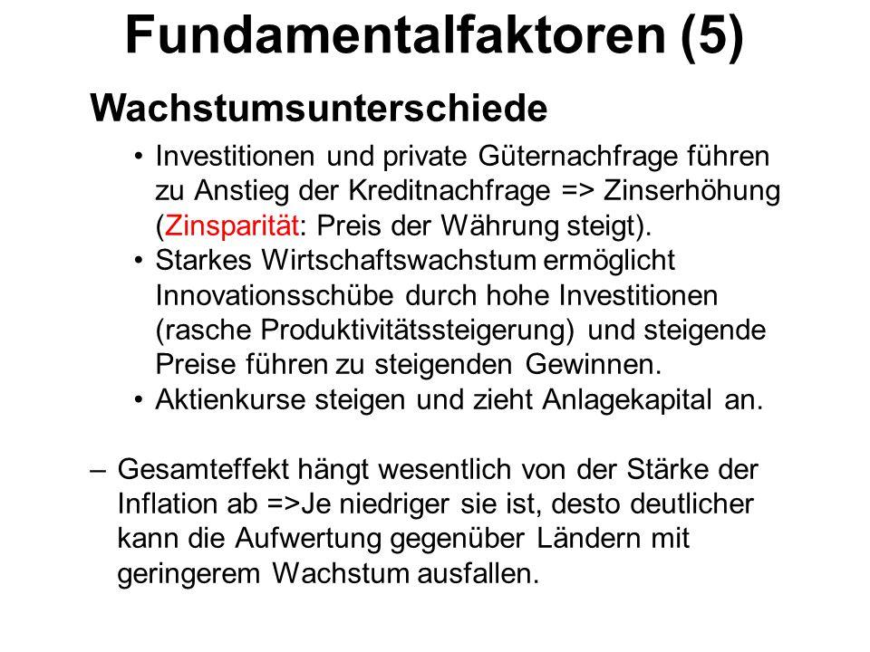Fundamentalfaktoren (5)