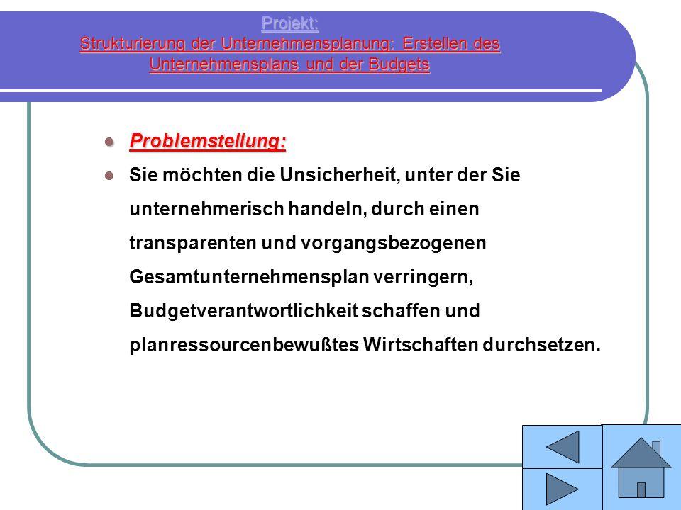 Projekt: Strukturierung der Unternehmensplanung: Erstellen des Unternehmensplans und der Budgets