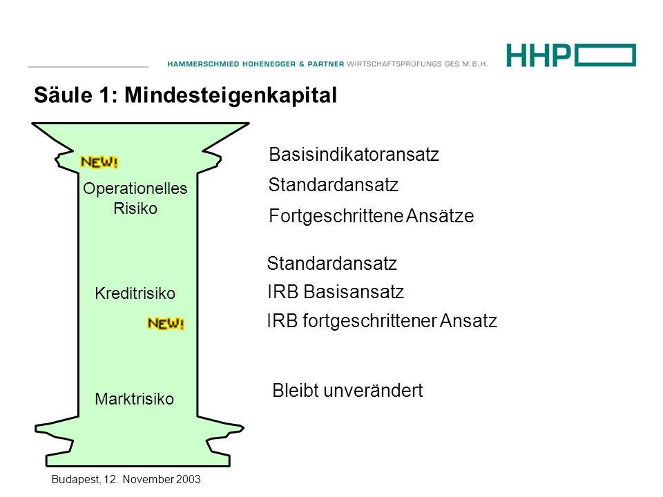 Säule 1: Mindesteigenkapital