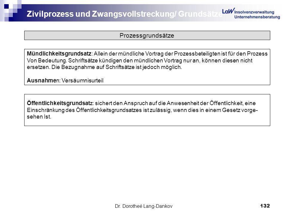 Zivilprozess und Zwangsvollstreckung/ Grundsätze