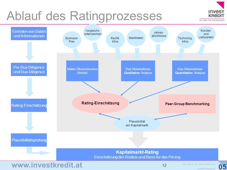 Ablauf des Ratingprozesses