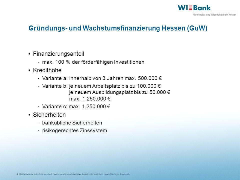 Gründungs- und Wachstumsfinanzierung Hessen (GuW)