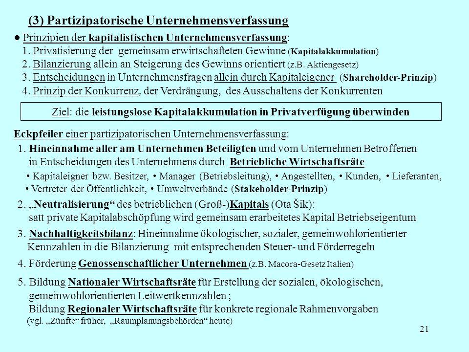 (3) Partizipatorische Unternehmensverfassung