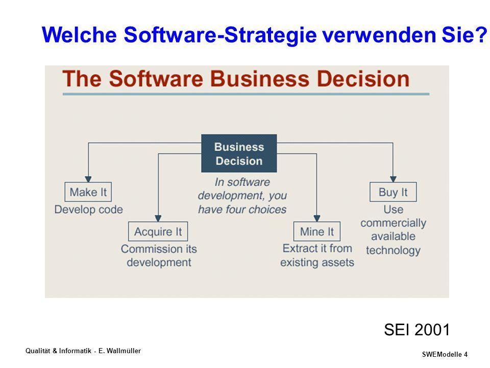 Welche Software-Strategie verwenden Sie