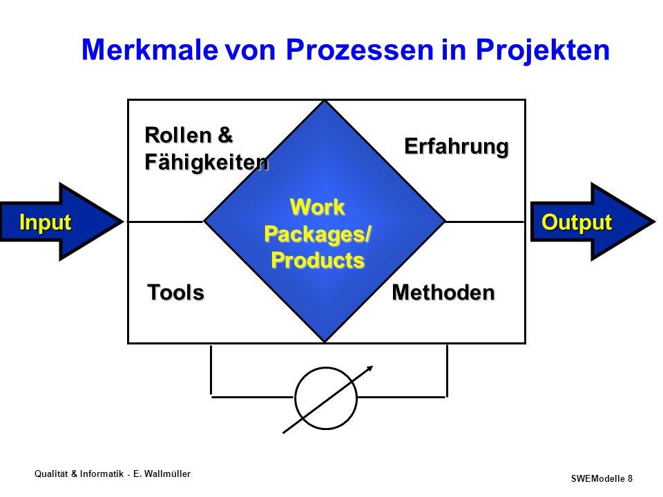 Merkmale von Prozessen in Projekten