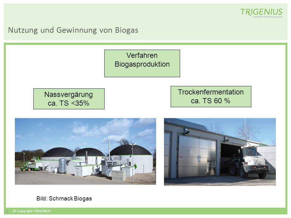 Nutzung und Gewinnung von Biogas