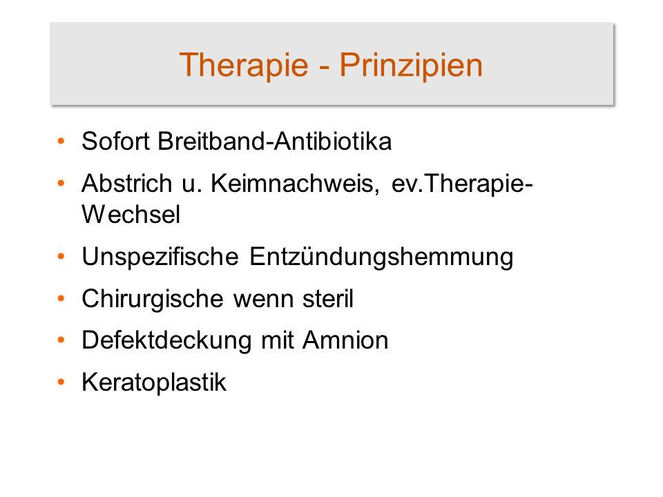 Therapie - Prinzipien Sofort Breitband-Antibiotika
