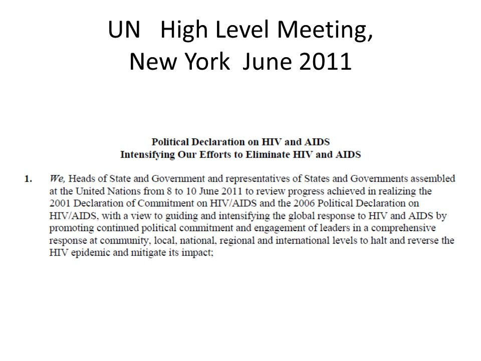 UN High Level Meeting, New York June 2011