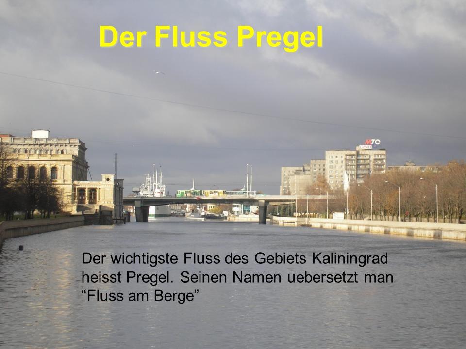 Der Fluss Pregel Der wichtigste Fluss des Gebiets Kaliningrad heisst Pregel.