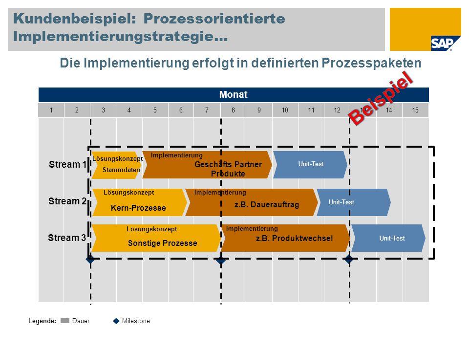 Kundenbeispiel: Prozessorientierte Implementierungstrategie…