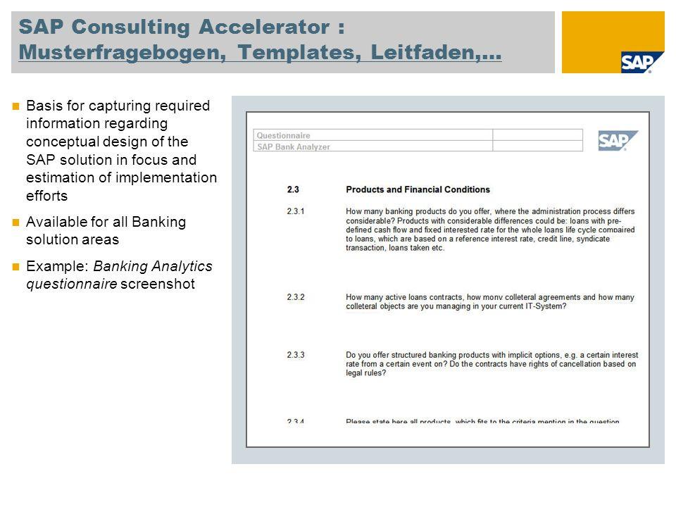 SAP Consulting Accelerator : Musterfragebogen, Templates, Leitfaden,…