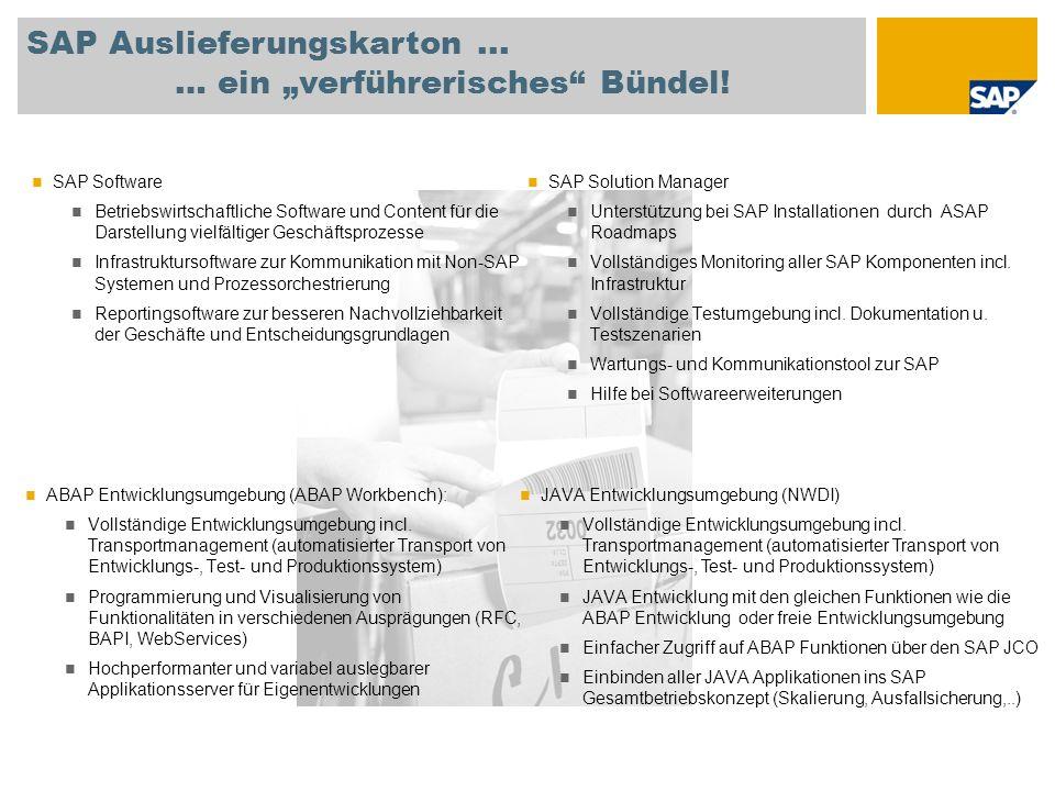 """SAP Auslieferungskarton ... … ein """"verführerisches Bündel!"""