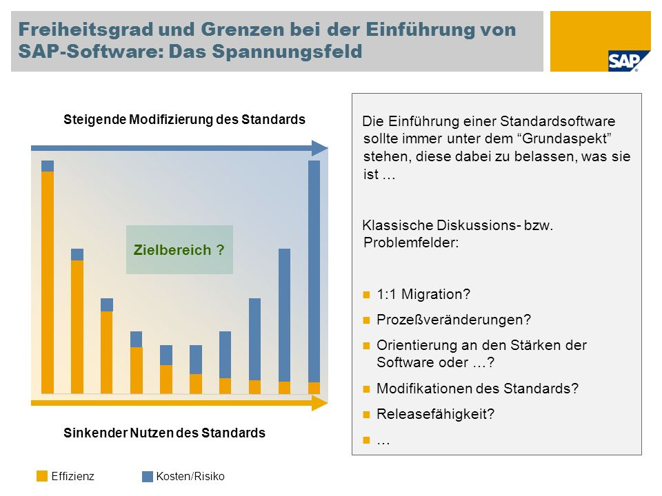 Freiheitsgrad und Grenzen bei der Einführung von SAP-Software: Das Spannungsfeld