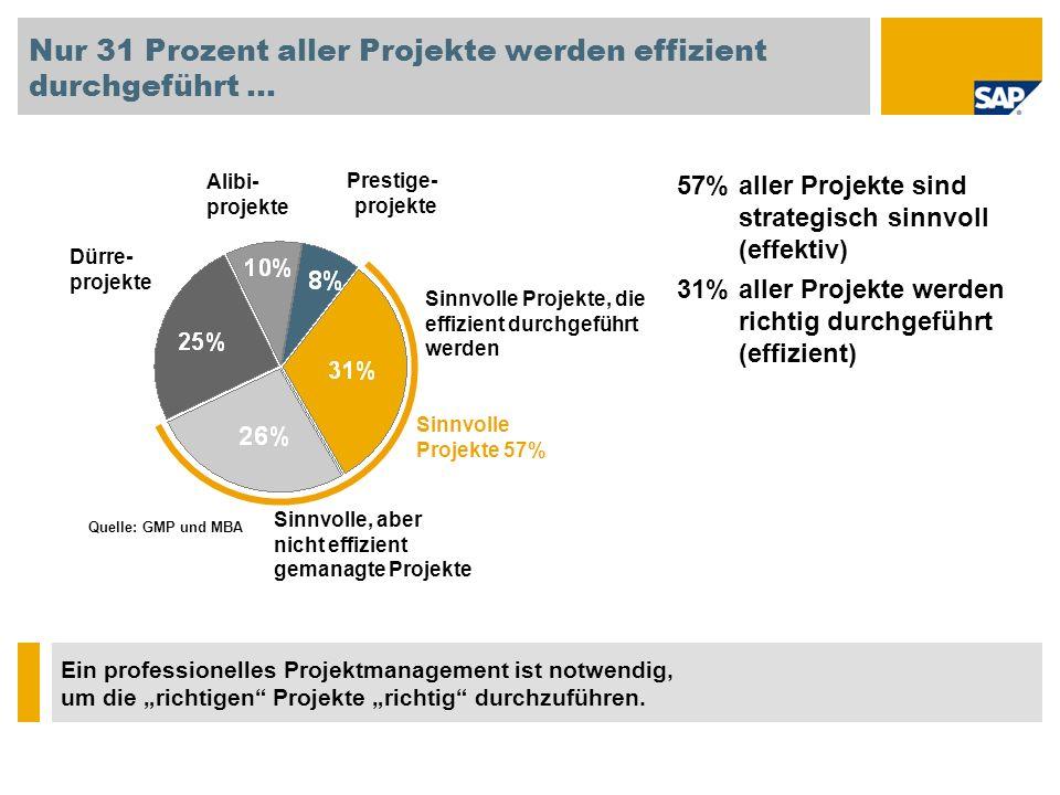 Nur 31 Prozent aller Projekte werden effizient durchgeführt …