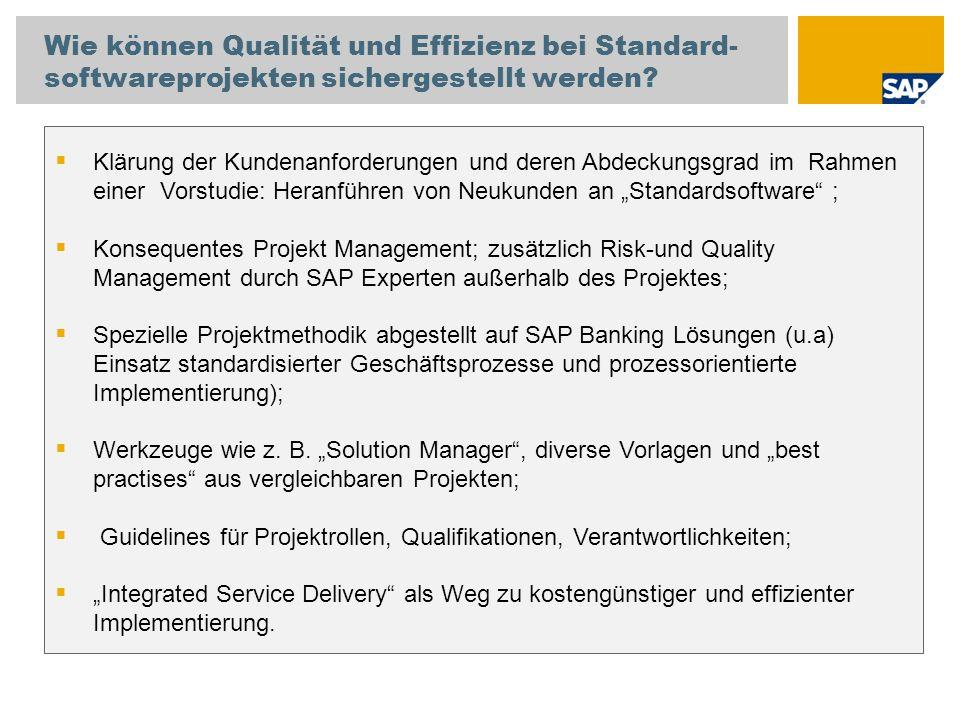 Wie können Qualität und Effizienz bei Standard-softwareprojekten sichergestellt werden