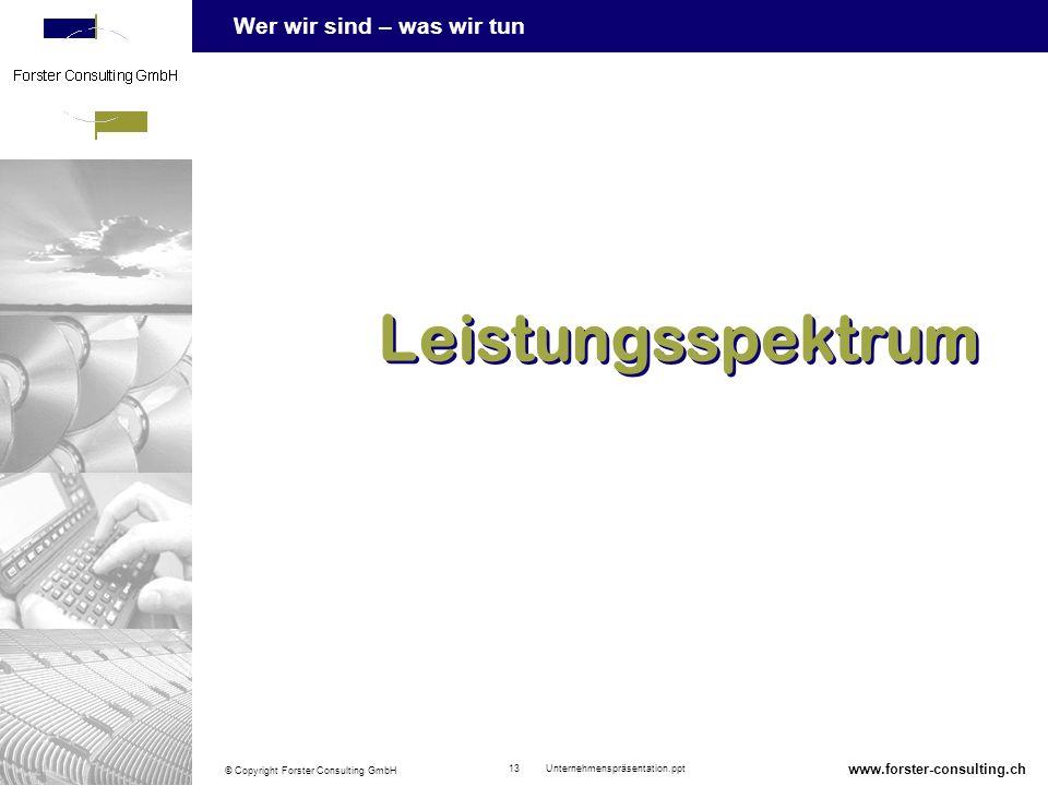 Leistungsspektrum www.forster-consulting.ch