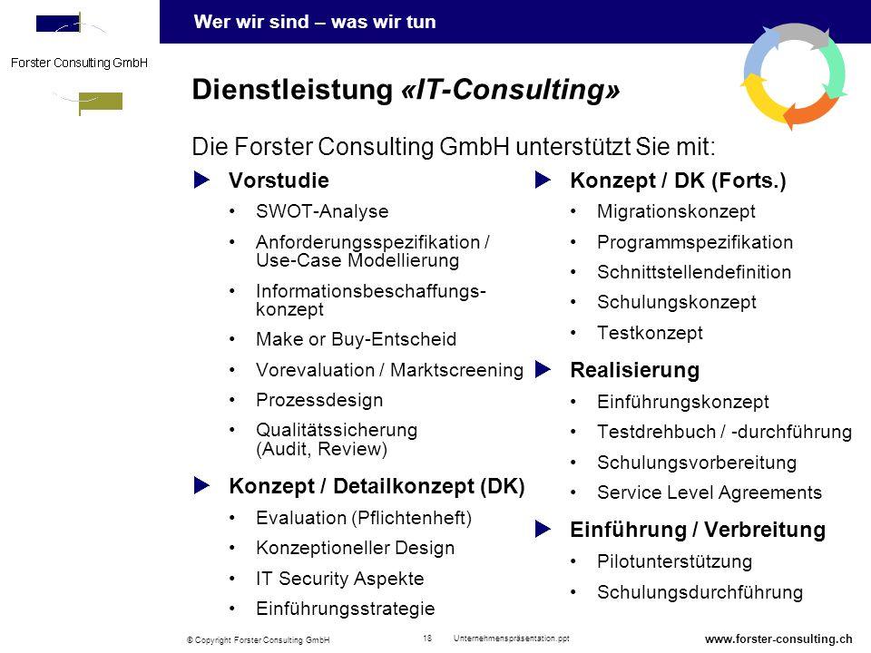 Dienstleistung «IT-Consulting»