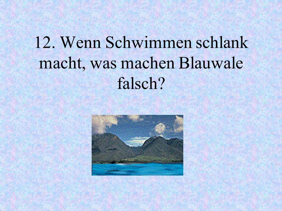 12. Wenn Schwimmen schlank macht, was machen Blauwale falsch