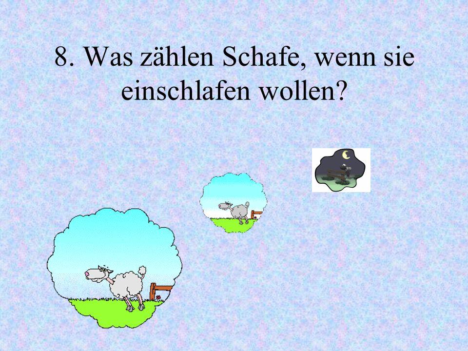 8. Was zählen Schafe, wenn sie einschlafen wollen
