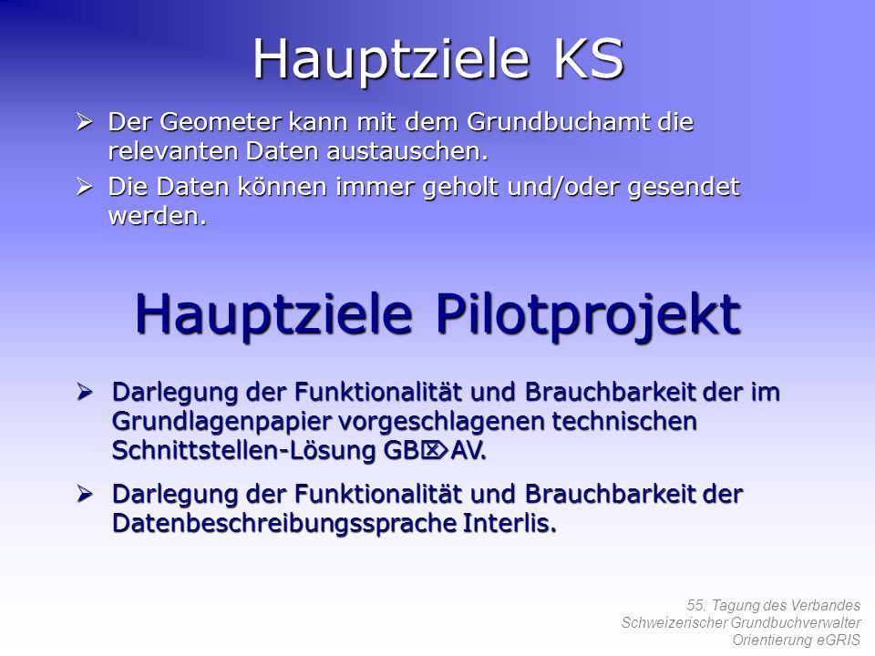 Hauptziele Pilotprojekt