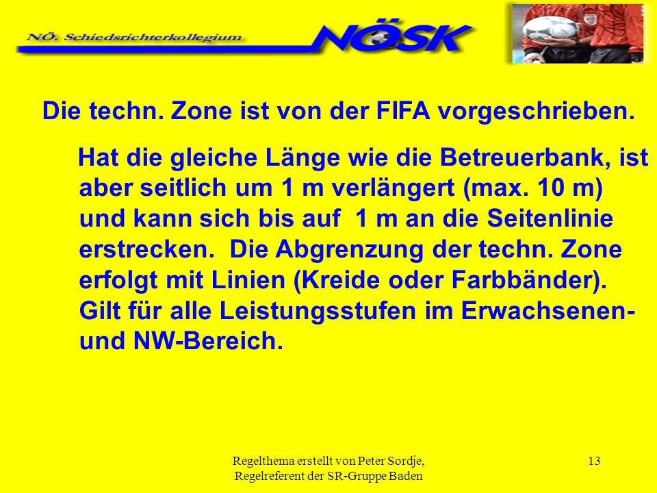 Die techn. Zone ist von der FIFA vorgeschrieben.