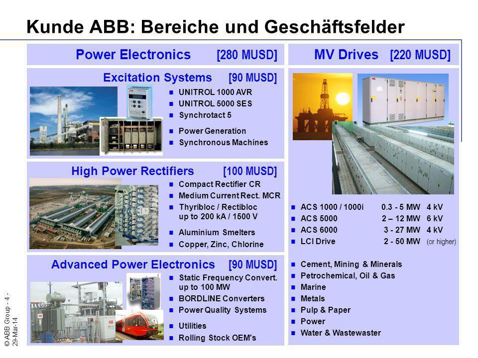 Kunde ABB: Bereiche und Geschäftsfelder