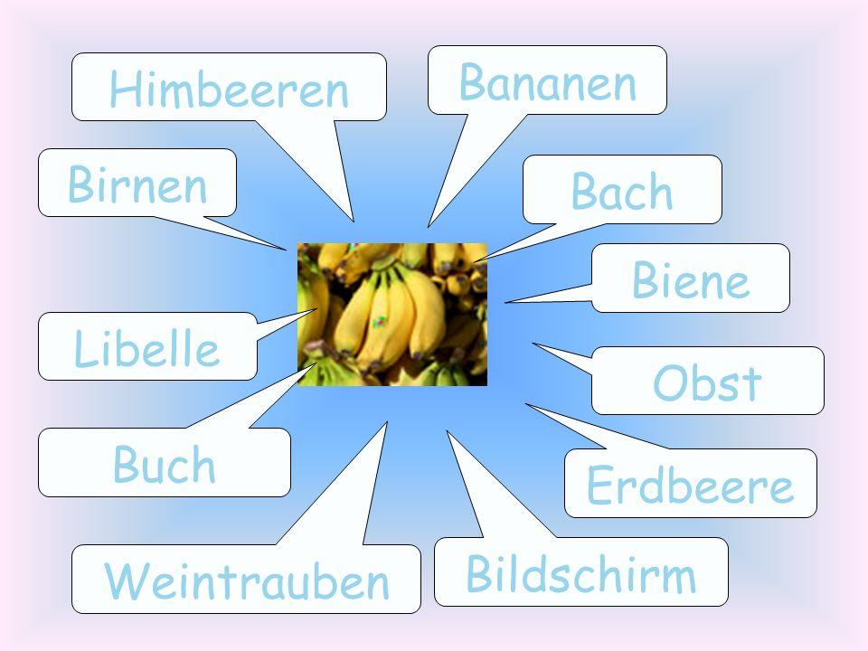 Bananen Himbeeren Birnen Bach Biene Libelle Obst Buch Erdbeere Bildschirm Weintrauben