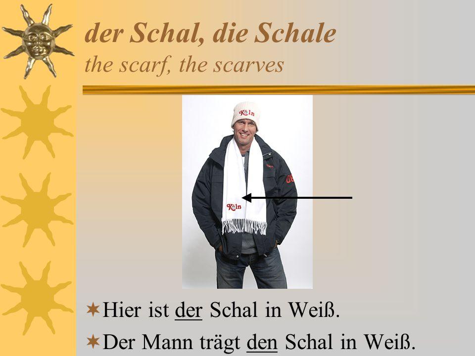 der Schal, die Schale the scarf, the scarves