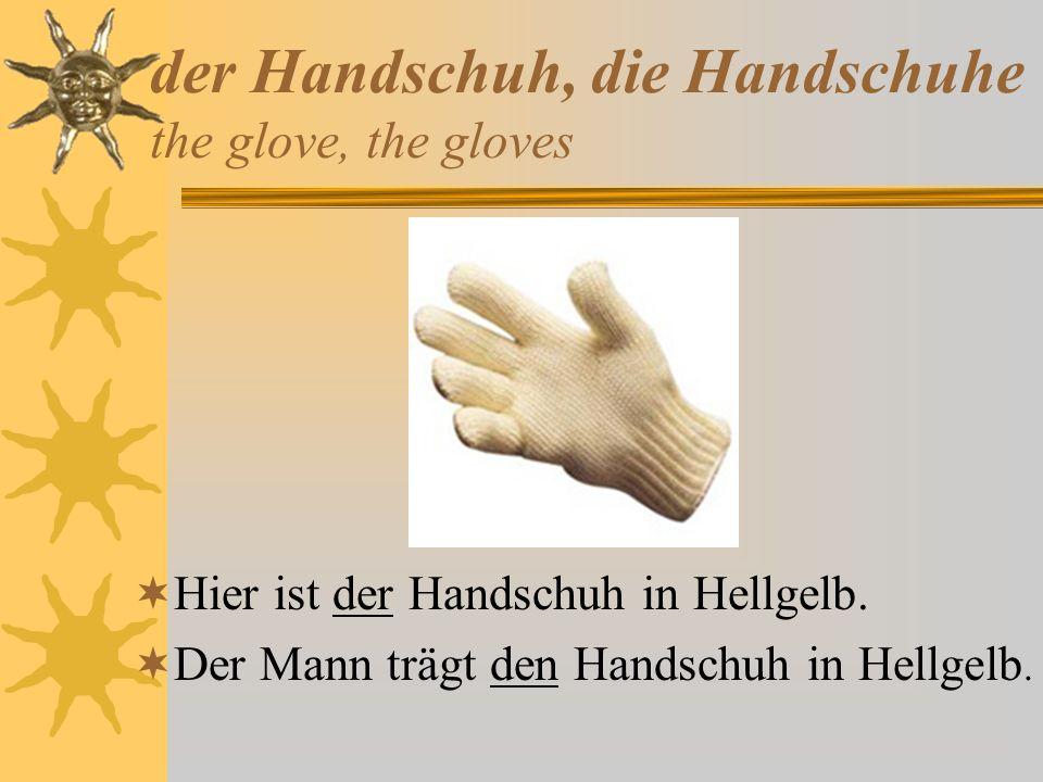 der Handschuh, die Handschuhe the glove, the gloves