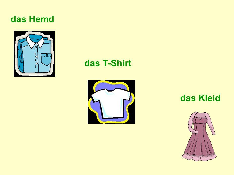 das Hemd das T-Shirt das Kleid