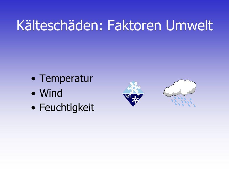 Kälteschäden: Faktoren Umwelt
