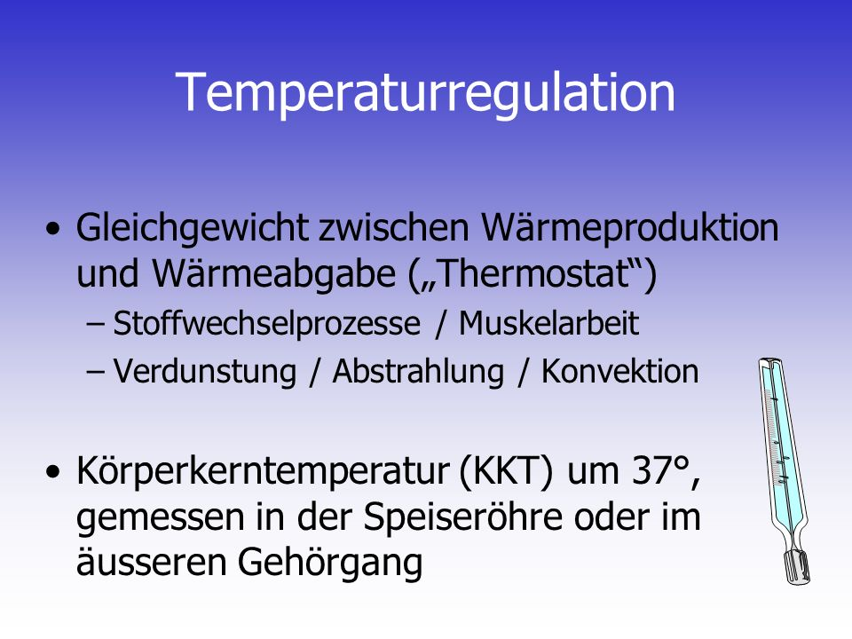 Temperaturregulation