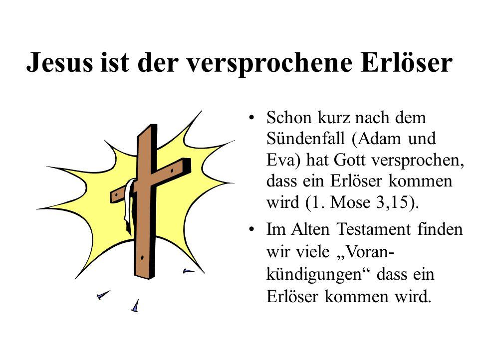 Jesus ist der versprochene Erlöser