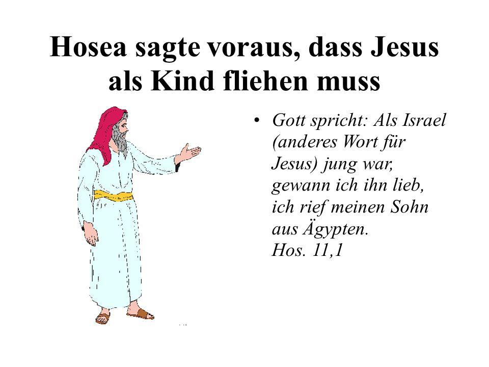 Hosea sagte voraus, dass Jesus als Kind fliehen muss