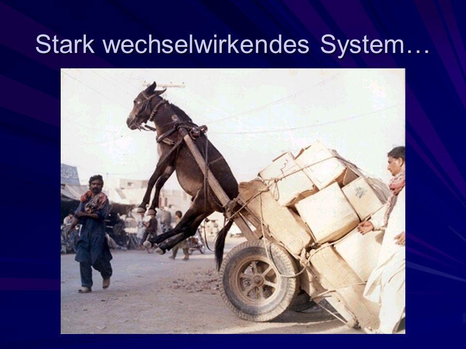 Stark wechselwirkendes System…