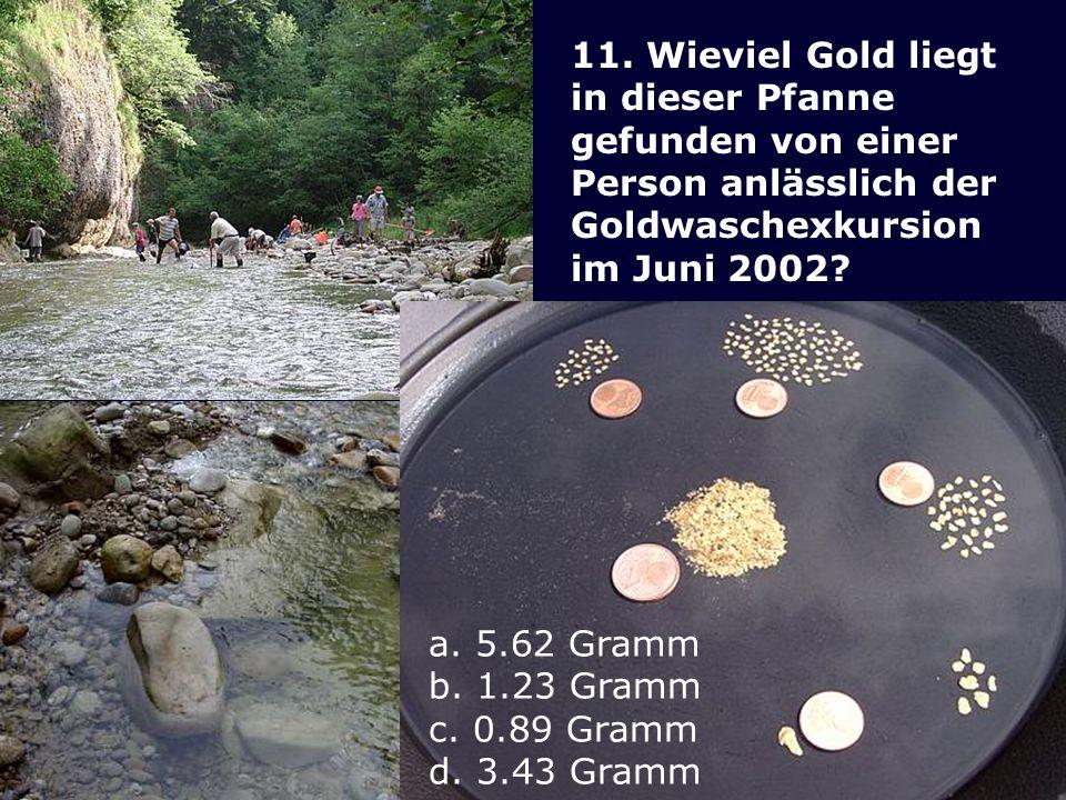 11. Wieviel Gold liegt in dieser Pfanne. gefunden von einer. Person anlässlich der. Goldwaschexkursion.