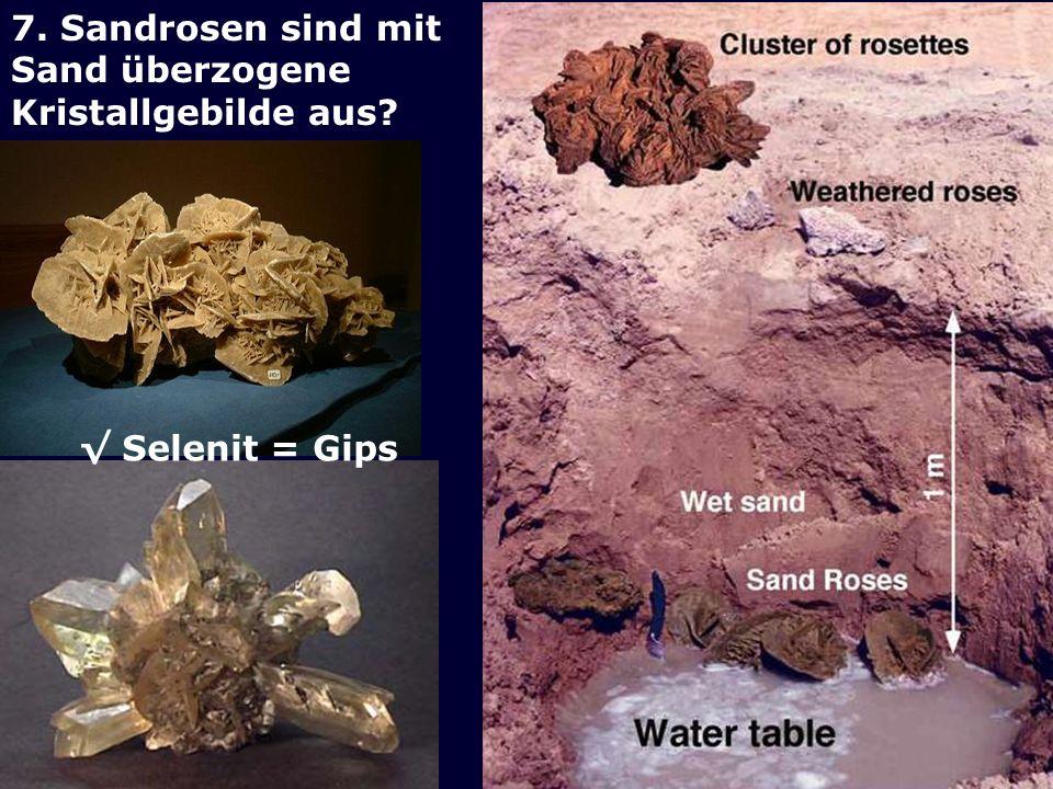 7. Sandrosen sind mit Sand überzogene Kristallgebilde aus √ Selenit = Gips