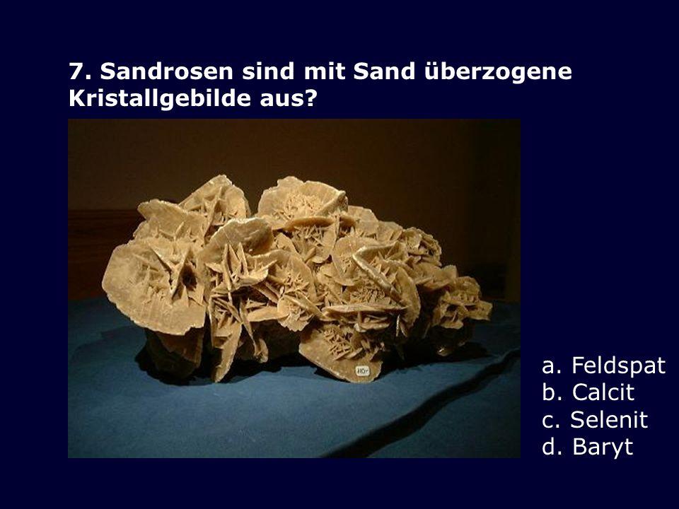 7. Sandrosen sind mit Sand überzogene