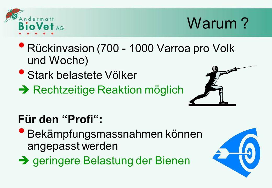 Warum Rückinvasion (700 - 1000 Varroa pro Volk und Woche)