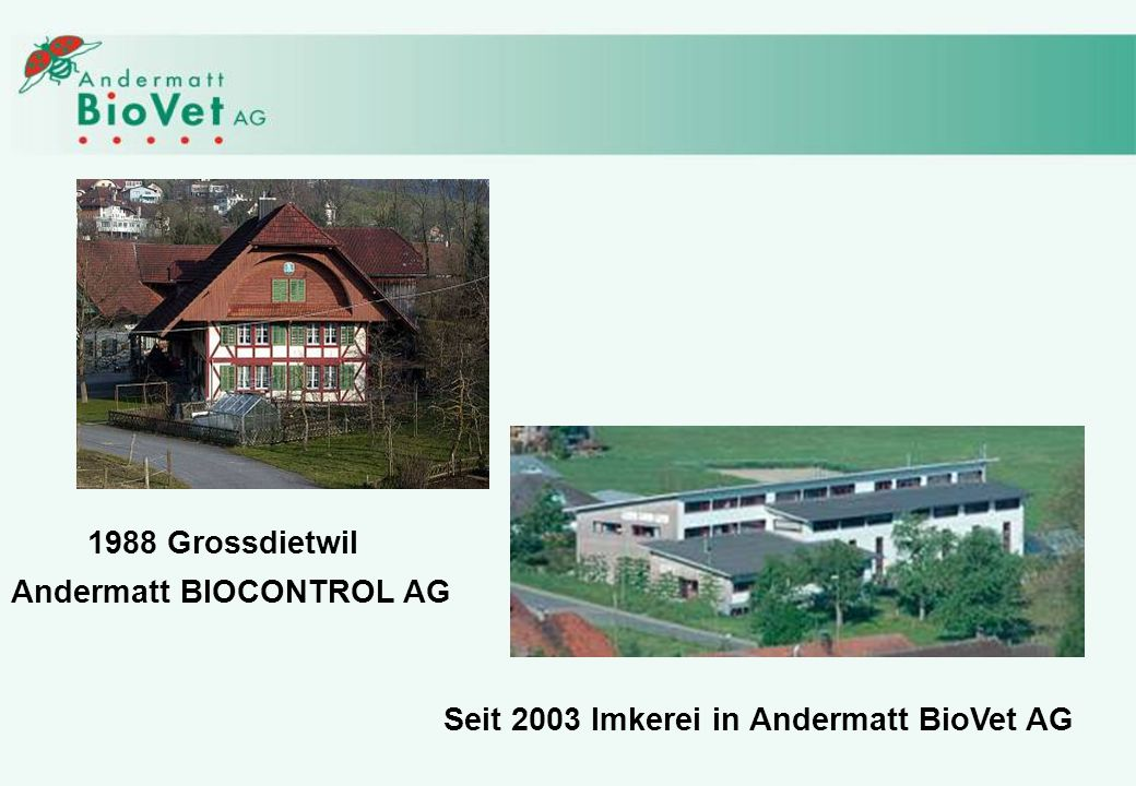 1988 Grossdietwil Andermatt BIOCONTROL AG Seit 2003 Imkerei in Andermatt BioVet AG