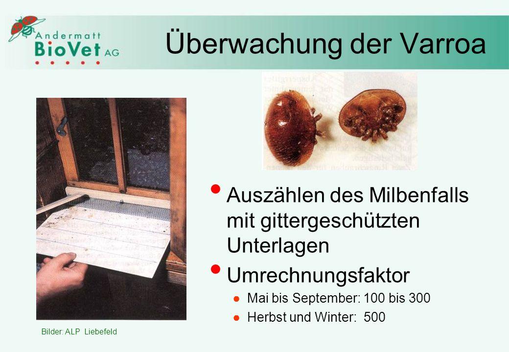Überwachung der Varroa