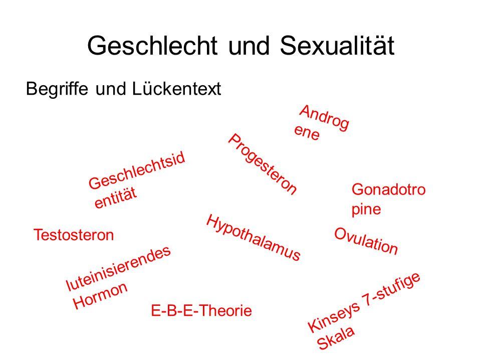 Geschlecht und Sexualität