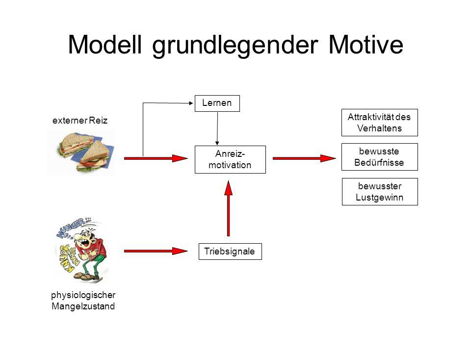 Modell grundlegender Motive